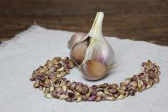 与种子的大蒜在亚麻布 图库摄影