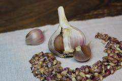 与种子的大蒜在亚麻布 免版税库存照片