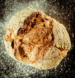 与种子的有壳的自创国家面包 库存图片