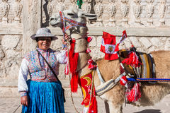 与秘鲁旗子和妇女阿雷基帕秘鲁的骆马 图库摄影