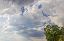 与积云和光束的天空从云彩的后面 免版税库存照片