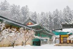 与积雪的树和亚洲寺庙Odaesan Woljeongsa的美好的冬天风景在韩国 免版税库存照片