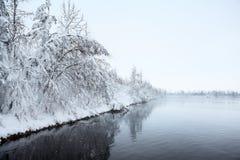 与积雪的树的冬天风景在湖 免版税库存图片
