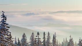 与积雪的结构树的美好的冬天横向 高加索佐治亚gudauri山冬天 影视素材