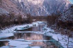 与积雪的结构树的美好的冬天横向 俄国 二者择一地 chulyshman河 库存图片