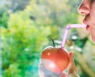 与秸杆的红色蕃茄 库存照片