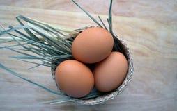 与秸杆的鸡蛋在柳条,木背景中 免版税库存照片