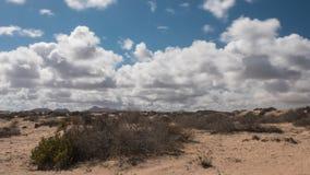 与移动的云彩的沙漠视图 影视素材
