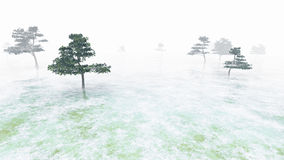 与稀疏的结构树的沼泽 免版税图库摄影