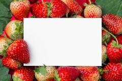 与空插件的一个草莓文本的 库存照片