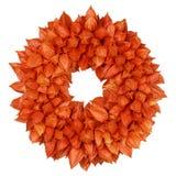 与空泡空泡alkekengi的秋季花圈在白色 库存图片