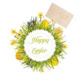 与空白的委员会、婴孩鸡、鸡蛋的和花的复活节花圈 免版税库存照片