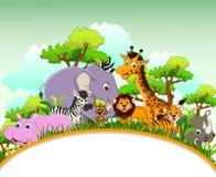 与空白的标志和热带森林背景的逗人喜爱的动物动画片 免版税库存图片
