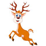 与空白的标志的愉快的鹿动画片 免版税库存图片
