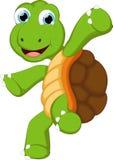 与空白的标志的滑稽的乌龟动画片您的设计 库存图片