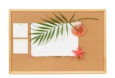 与空白的背景弄皱了纸、贝壳、棕榈事假和贝壳 免版税库存照片