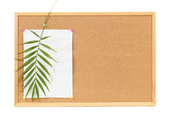 与空白的背景弄皱了纸和棕榈leavevacation消息 免版税图库摄影