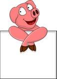 与空白符号的滑稽的猪动画片 免版税库存图片