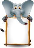 与空白符号的逗人喜爱的大象 库存照片