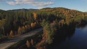 与空的乡下公路的秋天森林农村风景沿河 股票录像