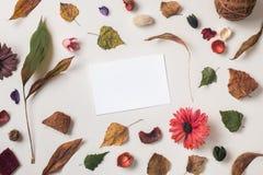 与空的纸牌的秋天背景 库存图片