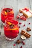 与空间的两个莓果饮料在一个冷的冬天 免版税库存图片
