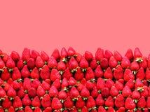 与空间的很多成熟草莓在玫瑰背景的文本的 健康食物的概念 库存照片