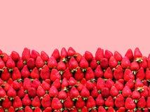 与空间的很多成熟草莓在红色背景的文本的 健康食物的概念 免版税库存照片
