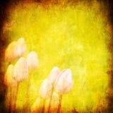 与空间的Grunge花卉背景文本的 向量例证