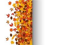 与空间的秋叶在右边的文本的 库存例证
