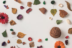 与空间的秋天构成文本的 库存图片