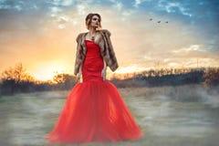 与穿毫华红色摆尾礼服的updo头发的美好的迷人的模型和豪华貂皮在有薄雾的领域授予身分在日落 免版税库存照片