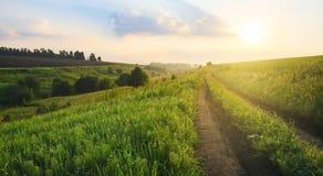 与穿过领域、青山和牧场地的地面乡下公路的晴朗的夏天风景在日出 库存照片