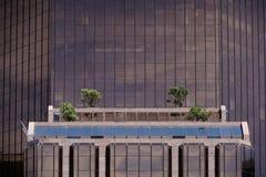 与窗槛花箱的高层建筑物 库存图片