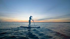 与站立在委员会和用浆划的一个亭亭玉立的夫人的日落waterscape 查出的黑色概念自由 影视素材