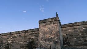 与站立在老历史的堡垒墙壁上的鸟的鬼的场面 库存照片