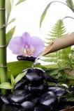 与竹喷泉的温泉静物画 免版税图库摄影