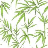 与竹子叶子和分支的无缝的样式 向量例证