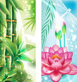 与竹子和莲花的横幅 免版税库存照片