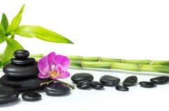 与竹子和许多石头的紫色兰花 免版税库存照片
