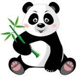 与竹子的坐的逗人喜爱的熊猫在白色 皇族释放例证