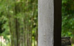 与竹森林的混凝土桩 库存图片