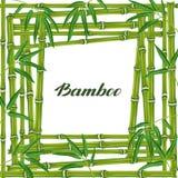 与竹植物和叶子的框架 为卡片, flayers,小册子设计,给小册子做广告 皇族释放例证