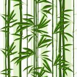 与竹的热带植物和叶子的无缝的样式 皇族释放例证