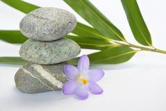 与竹en番红花的黑禅宗石头在空的白色背景 免版税库存图片