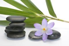 与竹en番红花的黑禅宗石头在空的白色背景 图库摄影