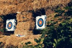 与箭头的射箭目标 免版税库存照片