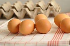 与箱的鸡蛋鸡蛋 免版税库存图片