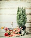 与篮子、花、喷壶、工具和myrte植物的从事园艺的设置在木背景的桌上 库存图片