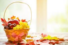 与篮子的秋天背景与黄色槭树离开,葡萄,红色苹果 秋天收获框架在年迈的木头的与拷贝空间 库存照片